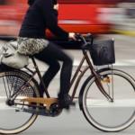 Veszélyes üzem a városi kerékpározás!